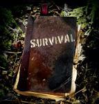 Survivaldag (Bootcamp). Durf jij?